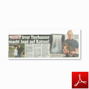 Artikel Bild Zeitung 26.09.2014 Vorschau